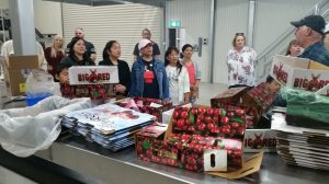 A group of Quest Apartment staff at Mr Joe Raponi's modern cherry packing house at Wilbriggie